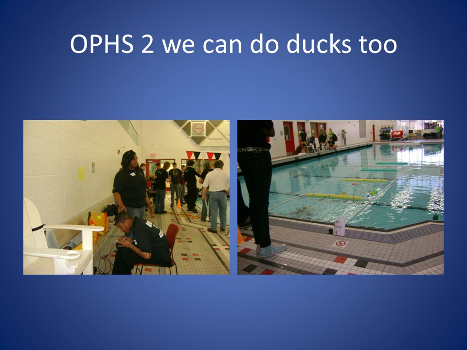 OPHS 2 we can do ducks too