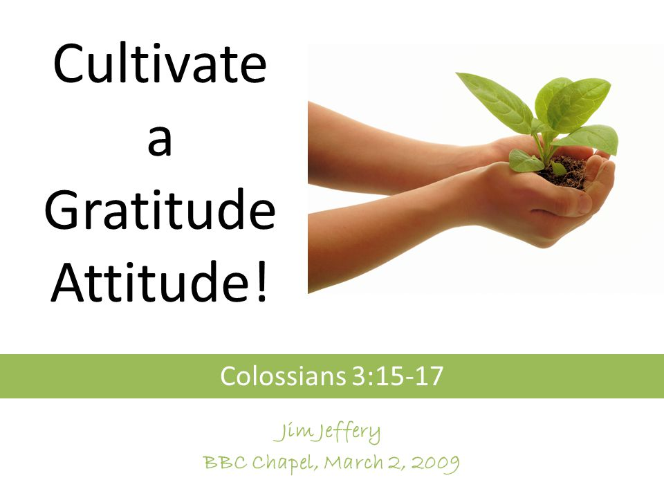 Cultivate a Gratitude Attitude! Colossians 3:15-17 Jim Jeffery BBC Chapel, March 2, 2009