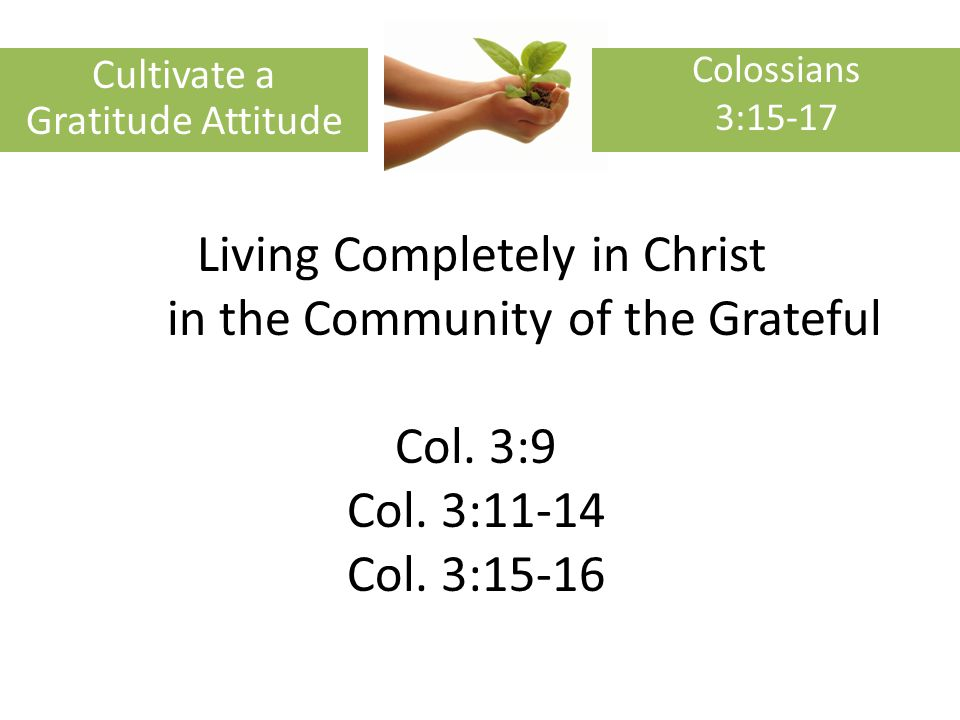 Living Completely in Christ in the Community of the Grateful Col.