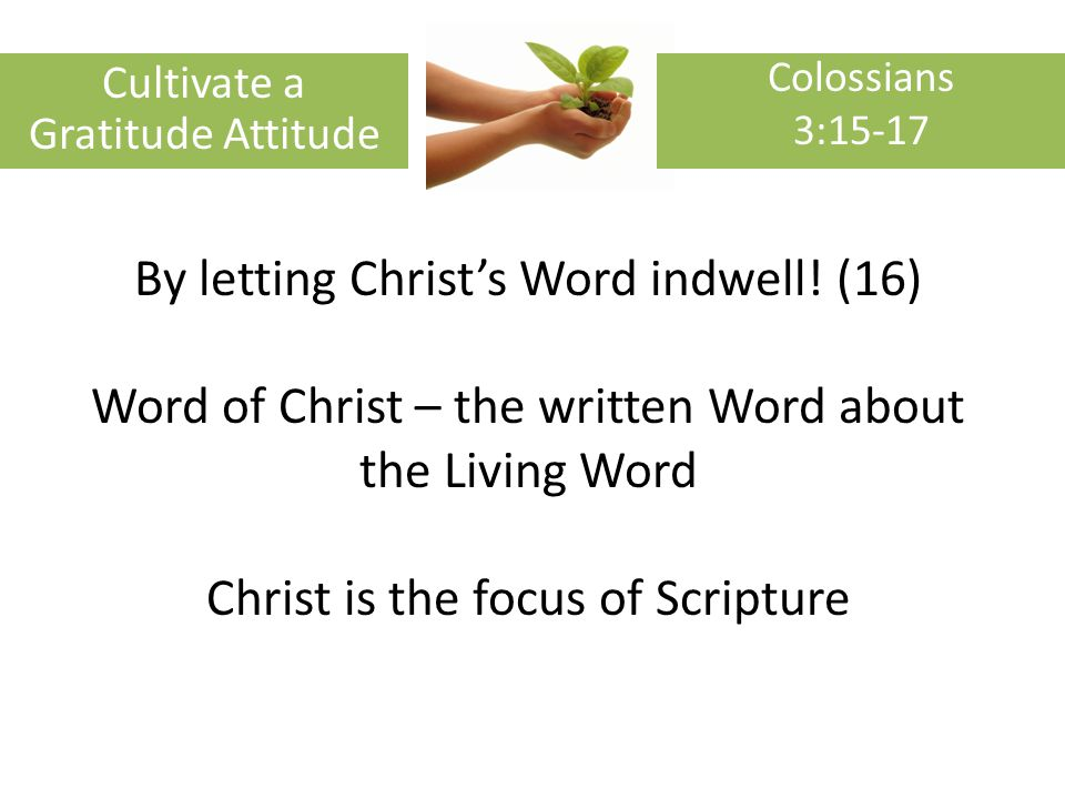 By letting Christs Word indwell.
