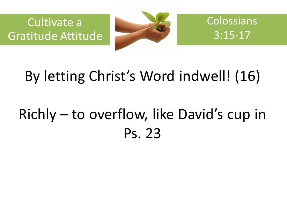 By letting Christs Word indwell. (16) Richly – to overflow, like Davids cup in Ps.