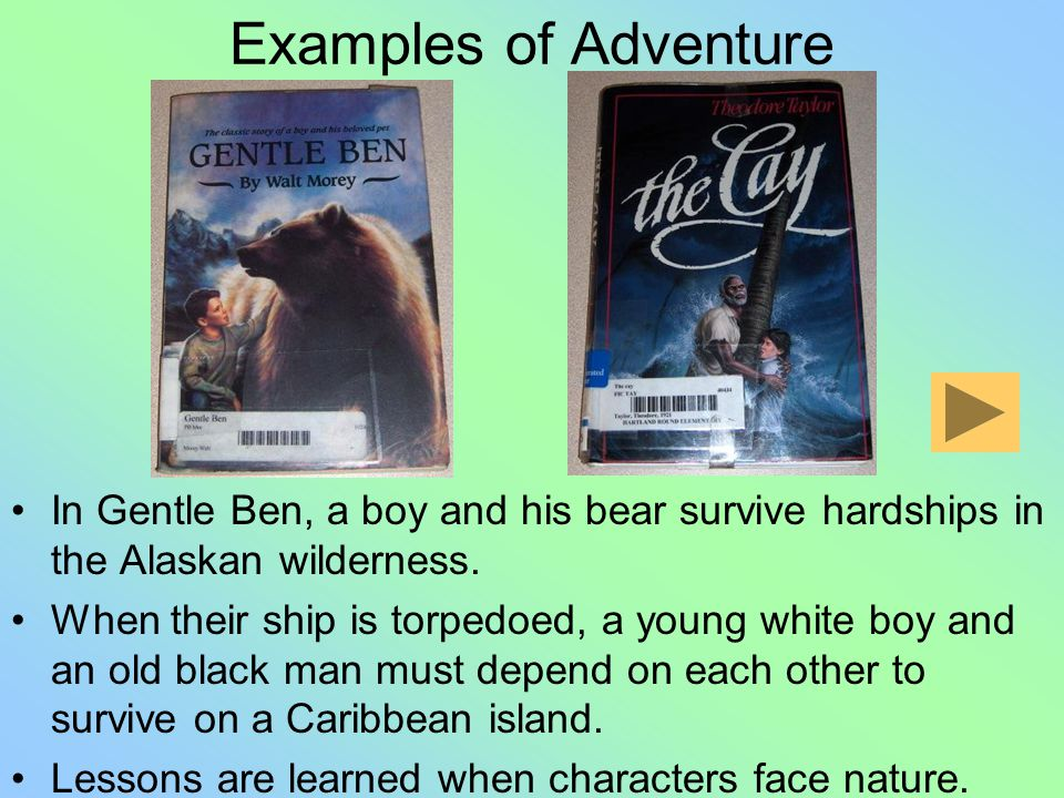 Adventure Type of fiction Main character struggles in a risky or unexpected setting Characters –Have realistic actions –Triumph over adversity and lea