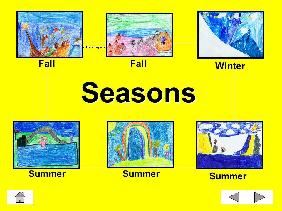 Seasons Summer Fall Winter Summer