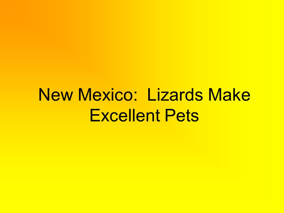 New Mexico: Lizards Make Excellent Pets