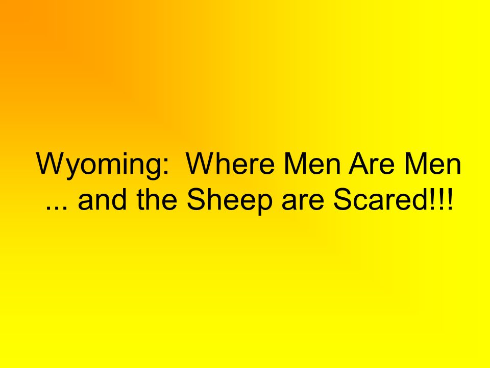 Wyoming: Where Men Are Men... and the Sheep are Scared!!!