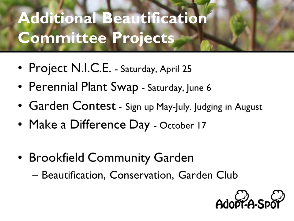 Additional Beautification Committee Projects Project N.I.C.E.