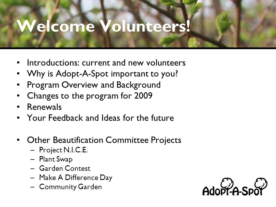 Welcome Volunteers! Introductions: current and new volunteers Why is Adopt-A-Spot important to you? Program Overview and Background Changes to the pro
