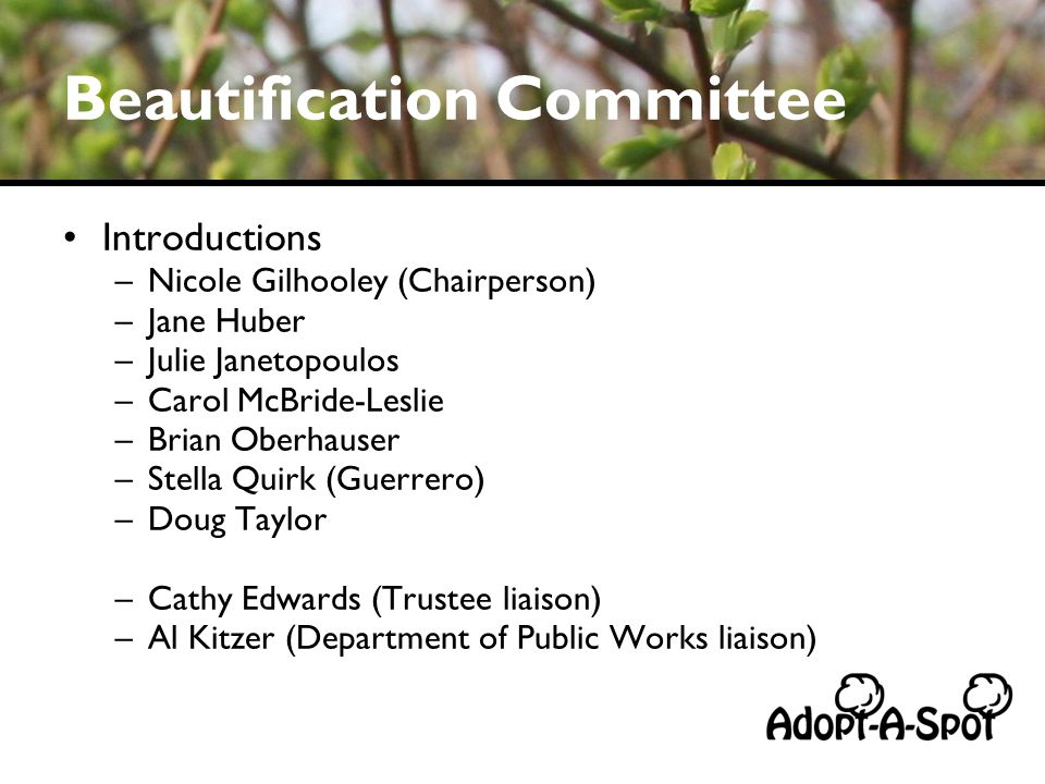 Beautification Committee Introductions –Nicole Gilhooley (Chairperson) –Jane Huber –Julie Janetopoulos –Carol McBride-Leslie –Brian Oberhauser –Stella Quirk (Guerrero) –Doug Taylor –Cathy Edwards (Trustee liaison) –Al Kitzer (Department of Public Works liaison)