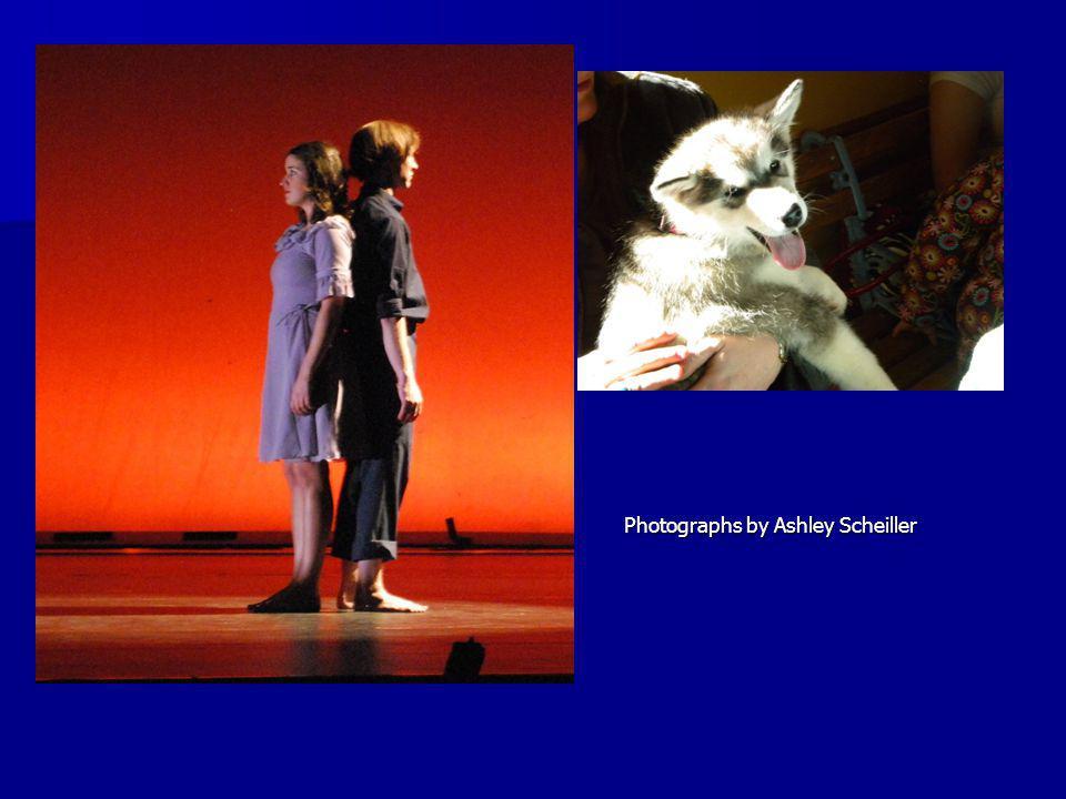 Photographs by Ashley Scheiller