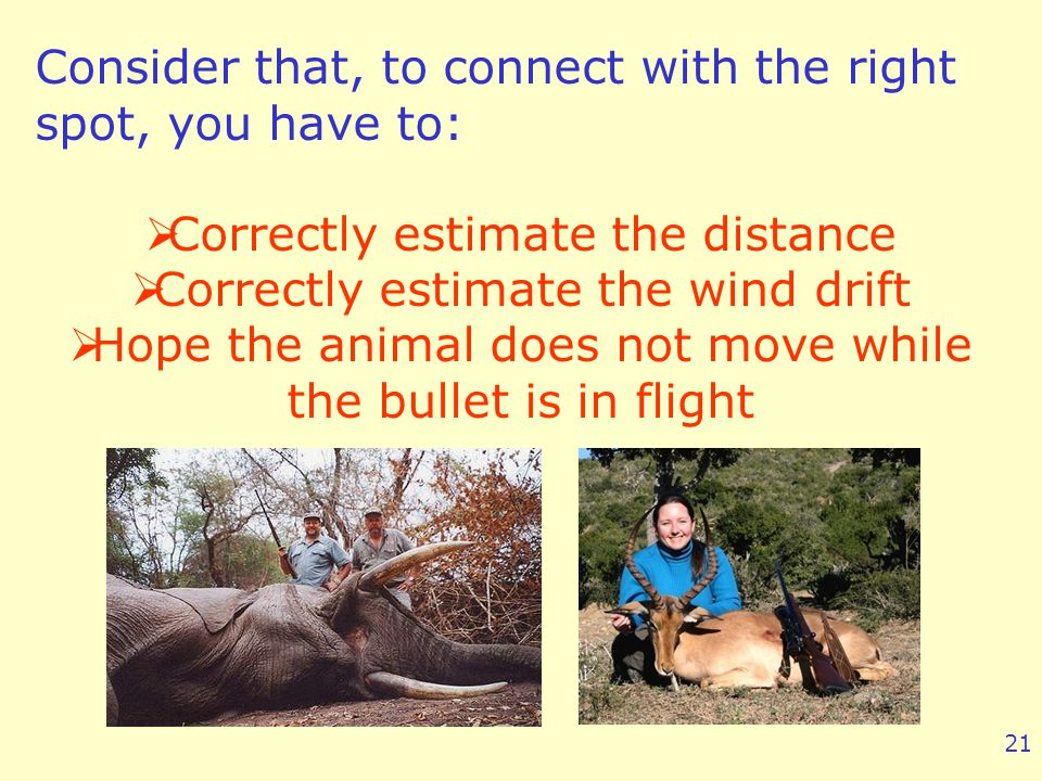 Consider that, to connect with the right spot, you have to: Correctly estimate the distance Correctly estimate the wind drift Hope the animal does not move while the bullet is in flight 21