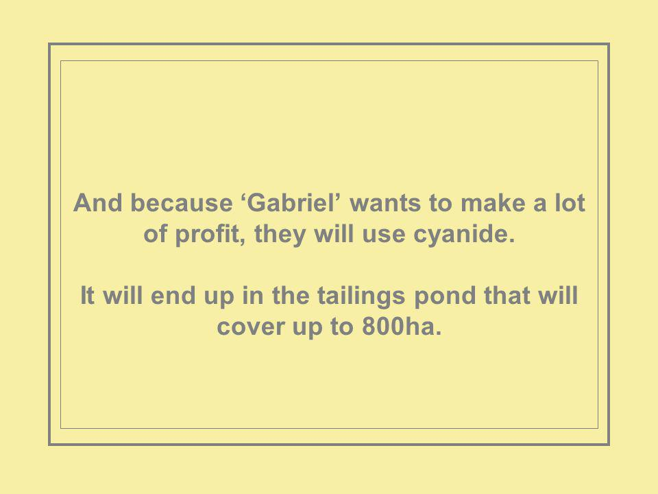 And because Gabriel wants to make a lot of profit, they will use cyanide.