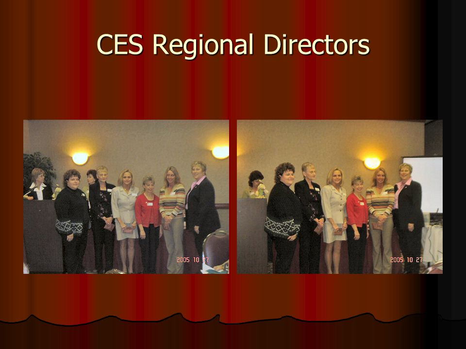CES Regional Directors