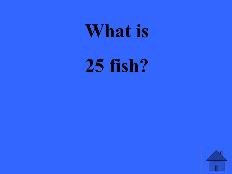 What is 25 fish