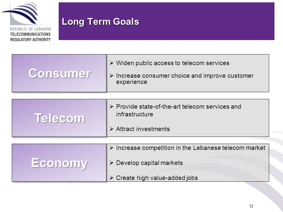12 Long Term Goals Provide state-of-the-art telecom services and infrastructure Attract investments Widen public access to telecom services Increase c