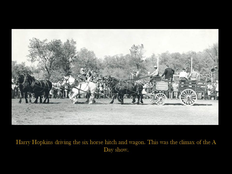 Harry Hopkins driving the six horse hitch and wagon. This was the climax of the A Day show.