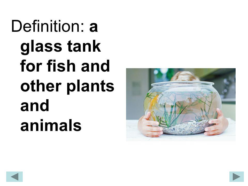 Definition: a glass tank for fish and other plants and animals