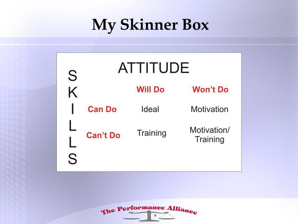 My Skinner Box