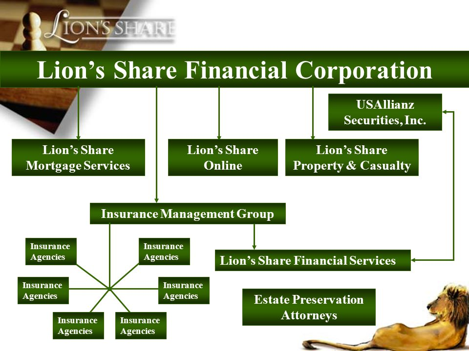 Lions Share Financial Corporation Lions Share Mortgage Services Lions Share Financial Services USAllianz Securities, Inc. Insurance Management Group L