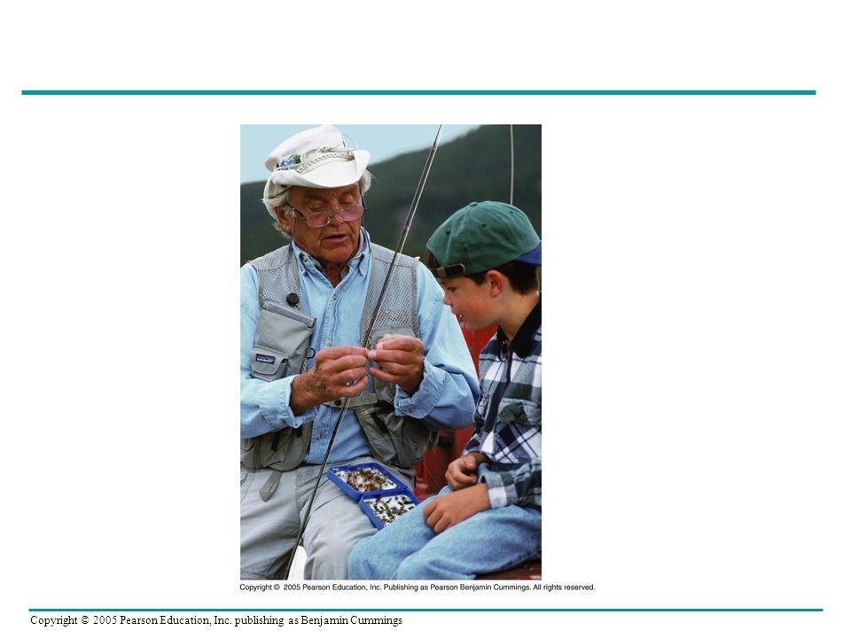 Copyright © 2005 Pearson Education, Inc. publishing as Benjamin Cummings
