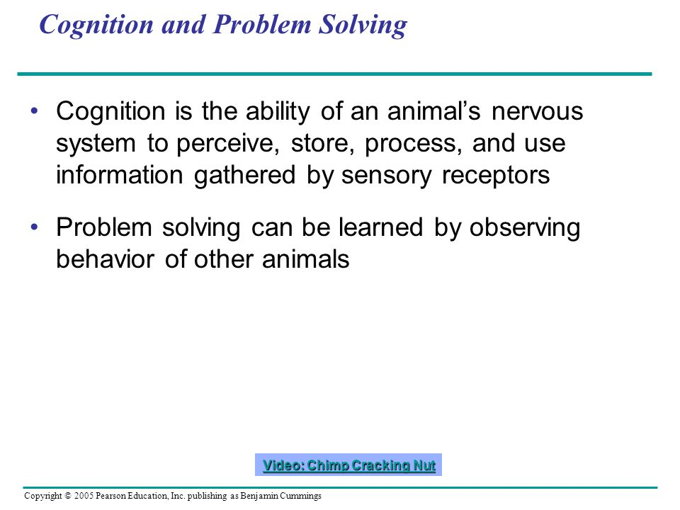 Cognition and Problem Solving Cognition is the ability of an animals nervous system to perceive, store, process, and use information gathered by sensory receptors Problem solving can be learned by observing behavior of other animals Video: Chimp Cracking Nut Video: Chimp Cracking Nut