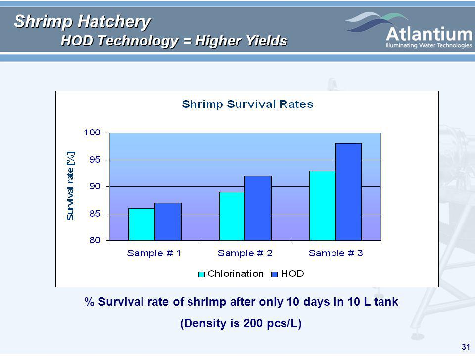 31 Shrimp Hatchery HOD Technology = Higher Yields % Survival rate of shrimp after only 10 days in 10 L tank (Density is 200 pcs/L)