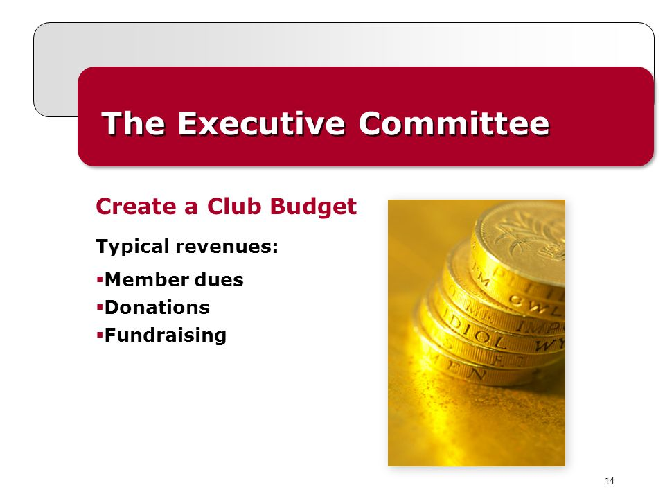 14 The Executive Committee Typical revenues: Member dues Donations Fundraising Create a Club Budget