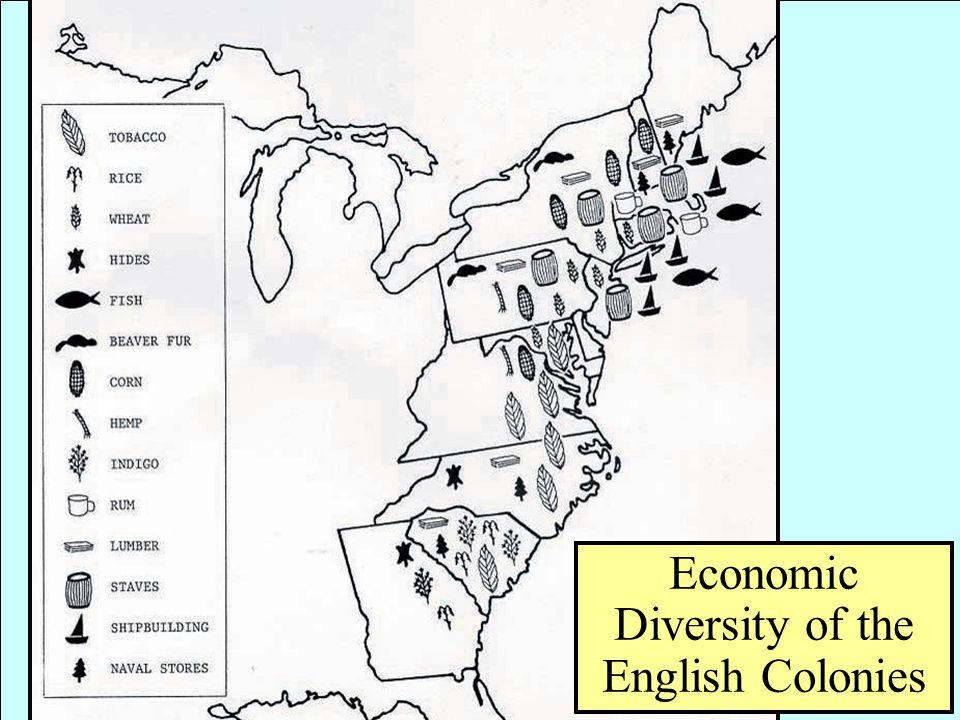 Economic Diversity of the English Colonies