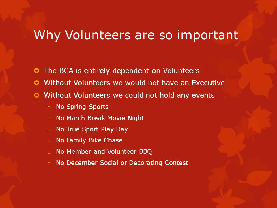 Why Volunteers are so important We would not have any outdoor rinks in Bridlewood We would not be able to donate $500 to each school each year There would be no street rep program or street parties Development and traffic would not be monitored High School students would have a harder time finding Community Service Hours