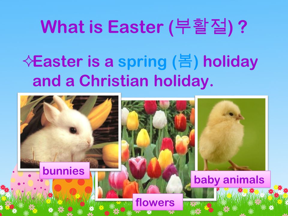 What is Easter ( ) . Easter is a spring ( ) holiday and a Christian holiday.