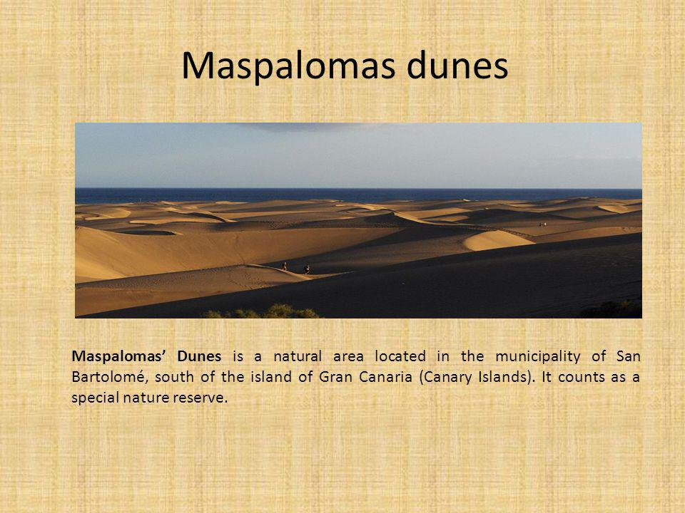 Maspalomas dunes Maspalomas Dunes is a natural area located in the municipality of San Bartolomé, south of the island of Gran Canaria (Canary Islands).