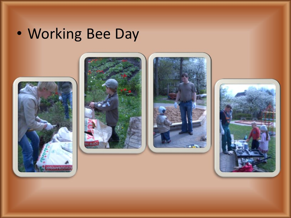 Working Bee Day