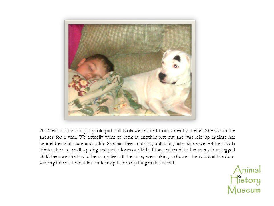 20. Melissa: This is my 3 yr old pitt bull Nola we rescued from a nearby shelter.