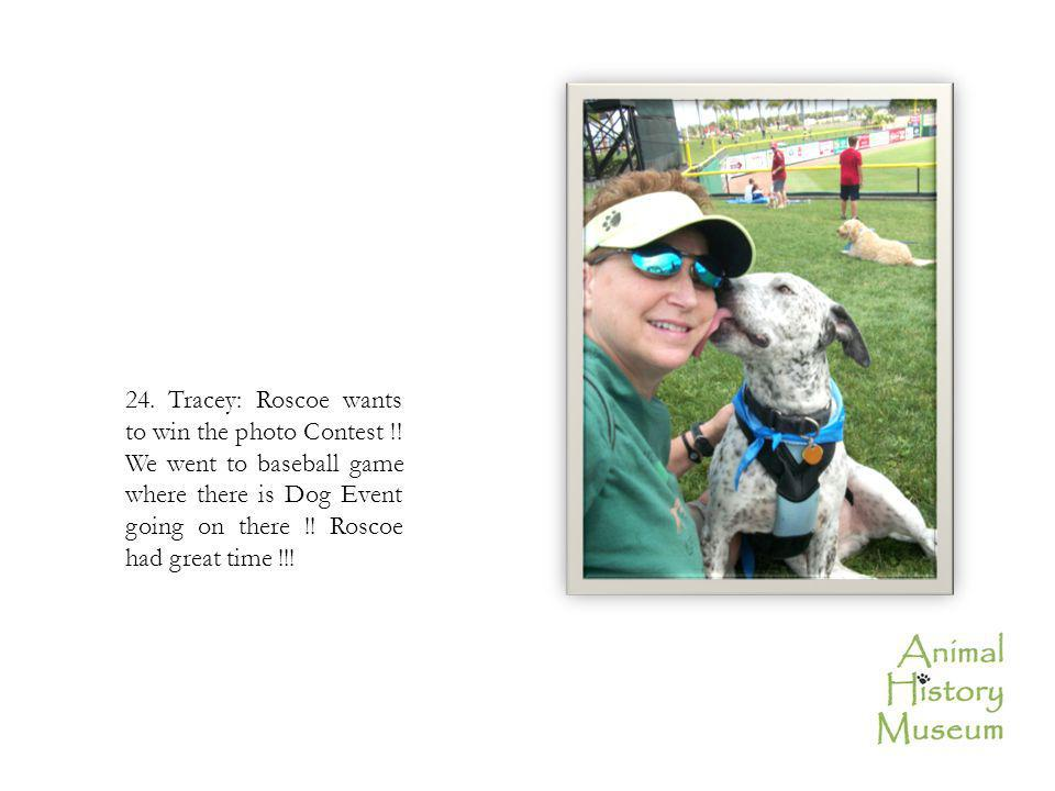 24. Tracey: Roscoe wants to win the photo Contest !! We went to baseball game where there is Dog Event going on there !! Roscoe had great time !!!