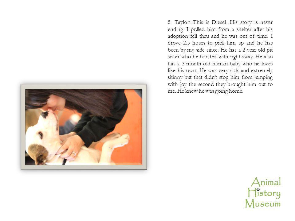5. Taylor: This is Diesel. His story is never ending.
