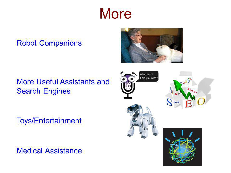 More Robot Companions More Useful Assistants and Search Engines Toys/Entertainment Medical Assistance