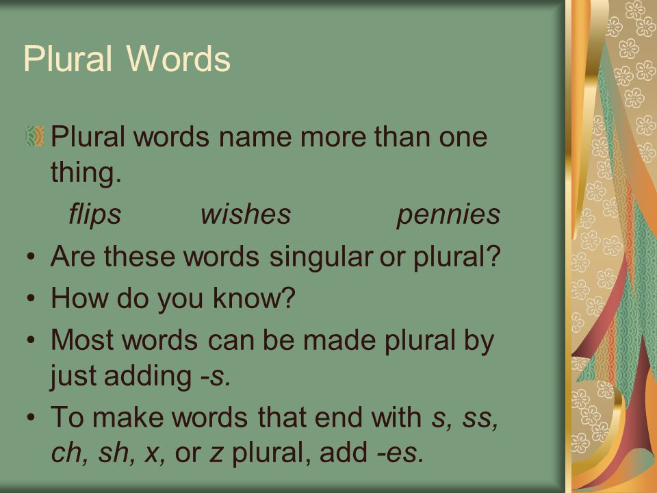 Plural Words Plural words name more than one thing. flipswishespennies Are these words singular or plural? How do you know? Most words can be made plu