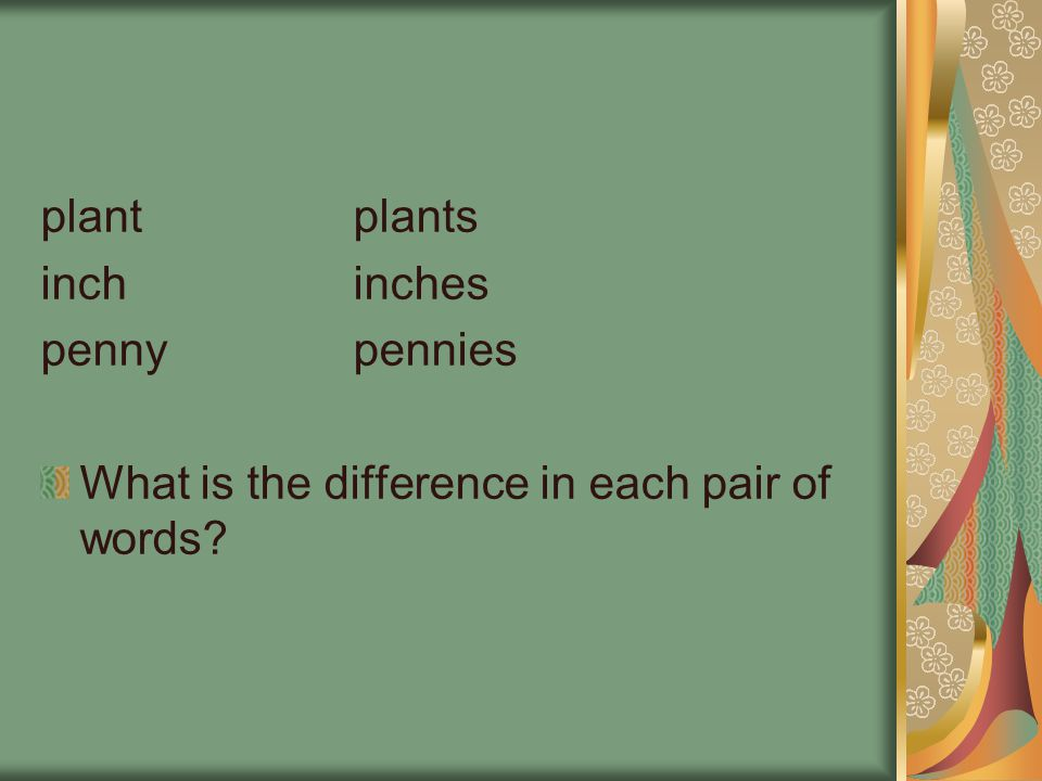 plantplants inchinches pennypennies What is the difference in each pair of words?
