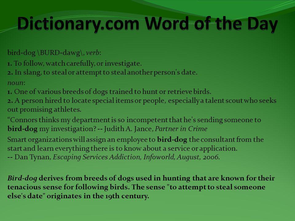 bird-dog \BURD-dawg\, verb: 1. To follow, watch carefully, or investigate.