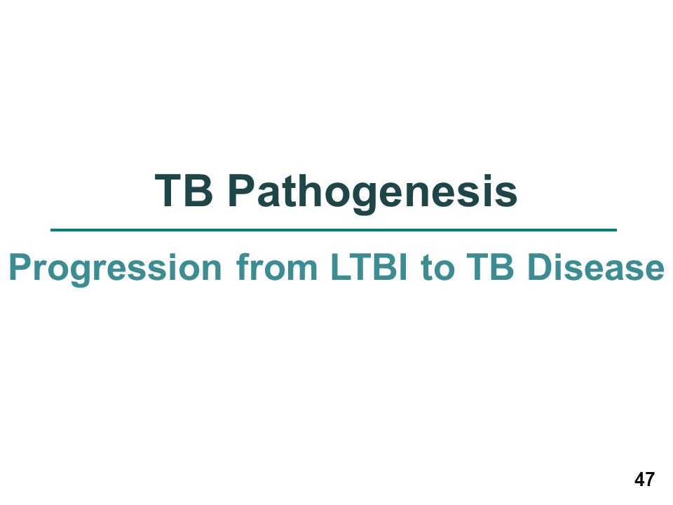 47 TB Pathogenesis Progression from LTBI to TB Disease