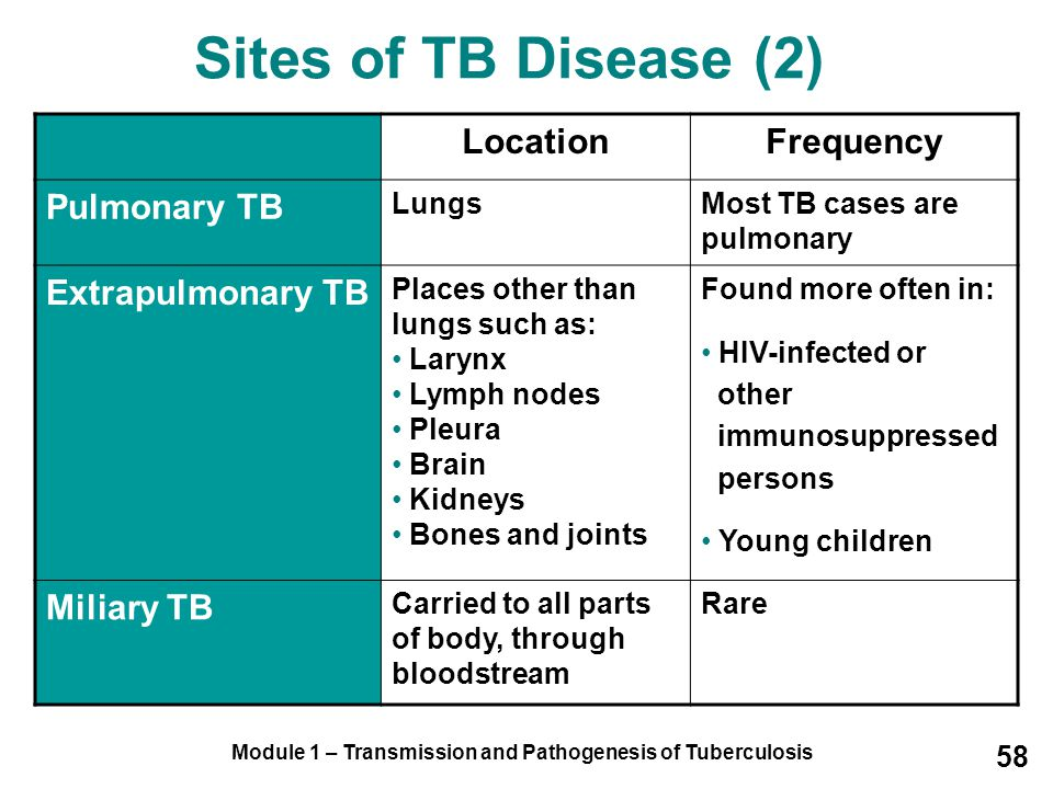 Module 1 – Transmission and Pathogenesis of Tuberculosis 58 Sites of TB Disease (2) LocationFrequency Pulmonary TB LungsMost TB cases are pulmonary Extrapulmonary TB Places other than lungs such as: Larynx Lymph nodes Pleura Brain Kidneys Bones and joints Found more often in: HIV-infected or other immunosuppressed persons Young children Miliary TB Carried to all parts of body, through bloodstream Rare