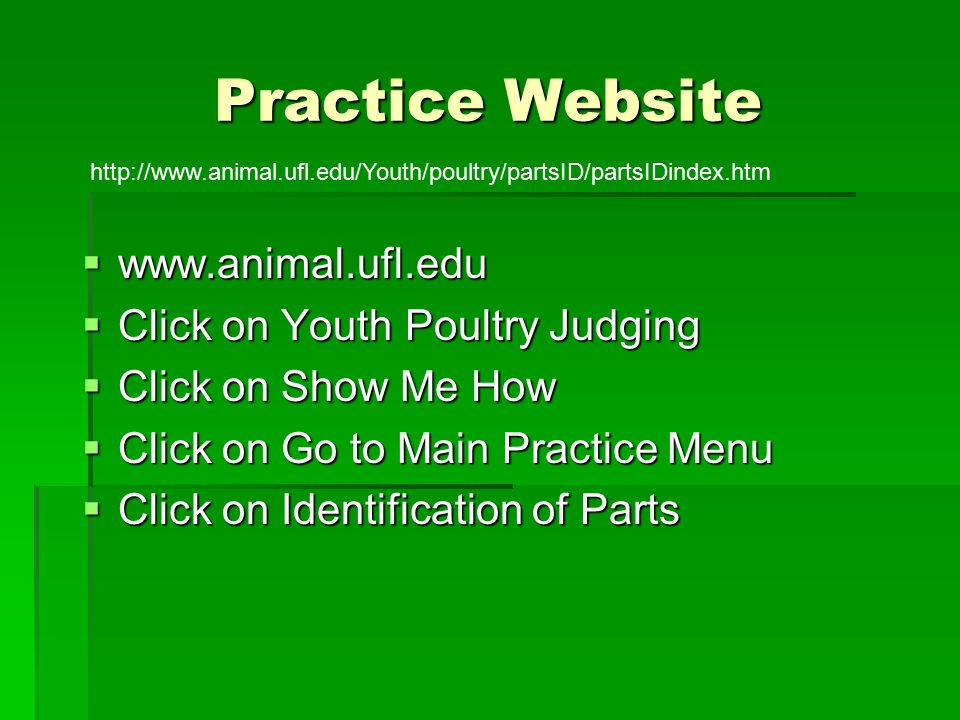 Practice Website http://www.animal.ufl.edu/Youth/poultry/partsID/partsIDindex.htm www.animal.ufl.edu www.animal.ufl.edu Click on Youth Poultry Judging Click on Youth Poultry Judging Click on Show Me How Click on Show Me How Click on Go to Main Practice Menu Click on Go to Main Practice Menu Click on Identification of Parts Click on Identification of Parts