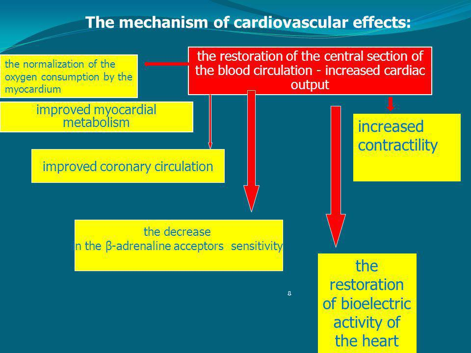 The mechanism of cardiovascular effects: increased contractility the restoration of bioelectric activity of the heart the restoration of the central section of the blood circulation - increased cardiac output improved myocardial metabolism the normalization of the oxygen consumption by the myocardium improved coronary circulation the decrease in the β-adrenaline acceptors sensitivity