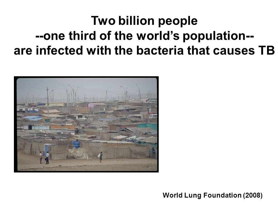 Two billion people --one third of the worlds population-- are infected with the bacteria that causes TB World Lung Foundation (2008)
