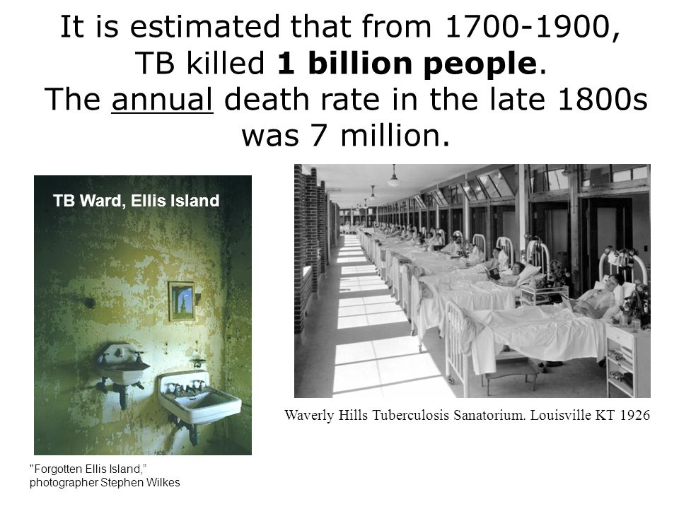 It is estimated that from 1700-1900, TB killed 1 billion people. The annual death rate in the late 1800s was 7 million. TB Ward, Ellis Island