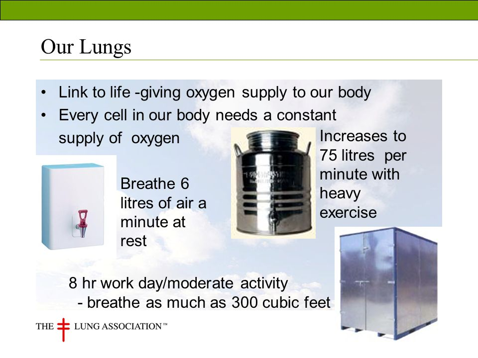 Our Lungs Link to life -giving oxygen supply to our body Every cell in our body needs a constant supply of oxygen Breathe 6 litres of air a minute at rest Increases to 75 litres per minute with heavy exercise 8 hr work day/moderate activity - breathe as much as 300 cubic feet