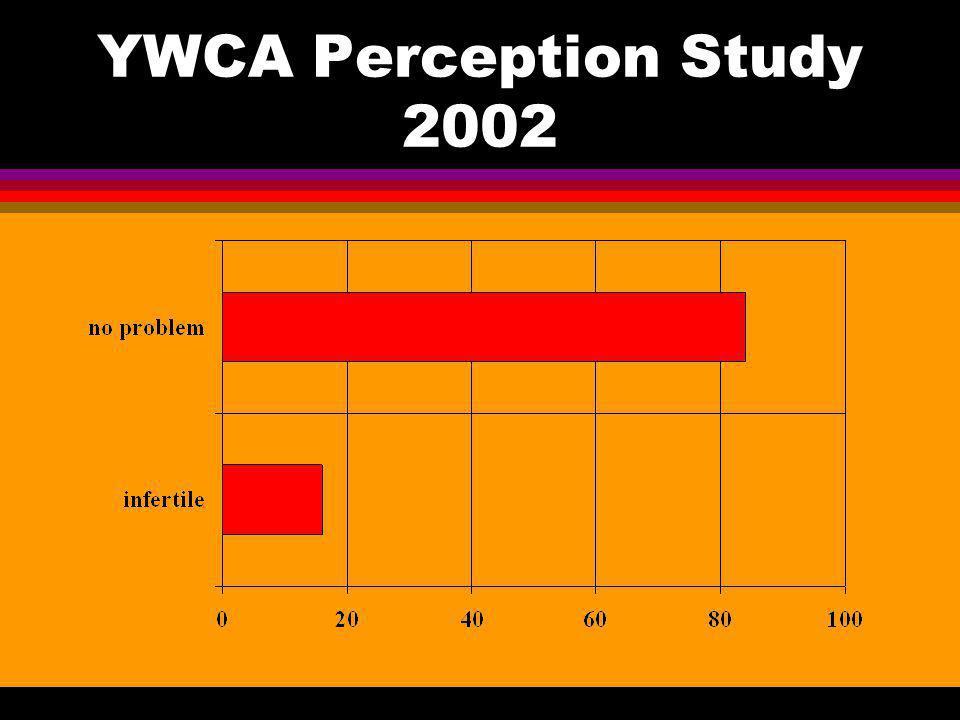 YWCA Perception Study 2002