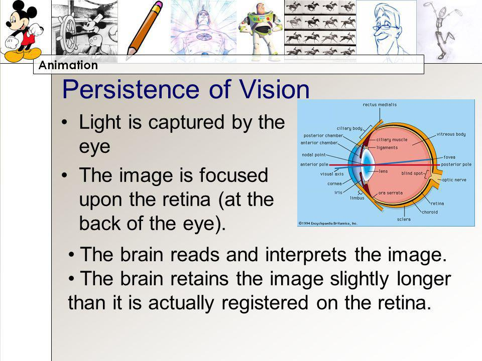 Animation Persistence of Vision Light is captured by the eye The image is focused upon the retina (at the back of the eye).