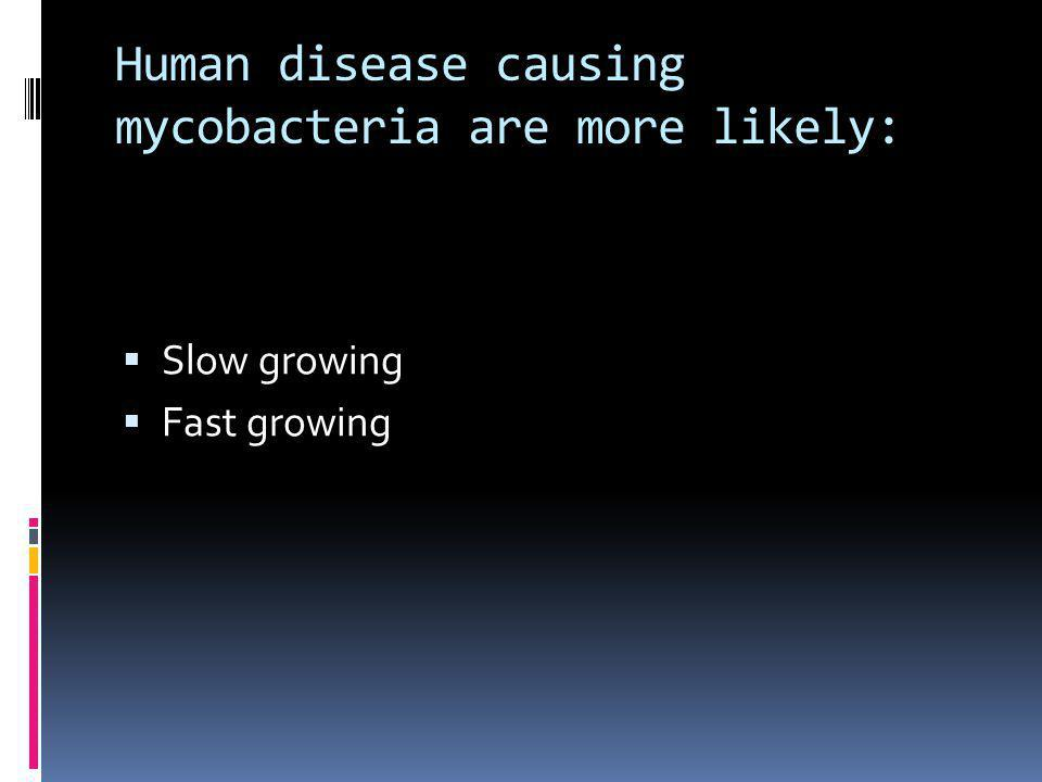 Human disease causing mycobacteria are more likely: Slow growing Fast growing