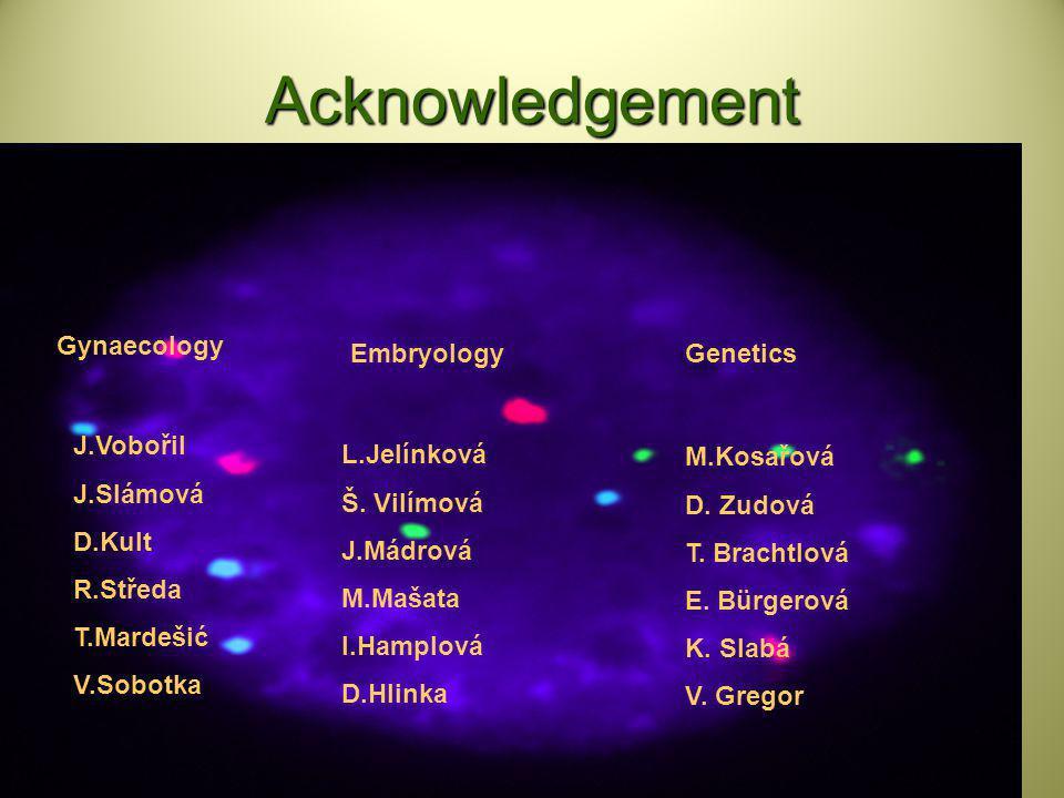 Acknowledgement J.Vobořil J.Slámová D.Kult R.Středa T.Mardešić V.Sobotka L.Jelínková Š. Vilímová J.Mádrová M.Mašata I.Hamplová D.Hlinka Gynaecology Em