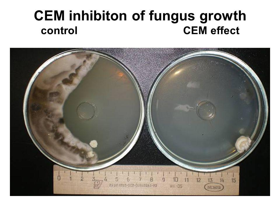 CEM inhibiton of fungus growth control CEM effect